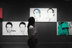 Looking At Art Through Damaged Eyes (The Warhol Show)