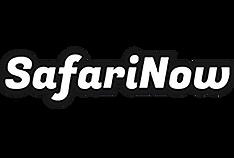 Safarinowlogo.png