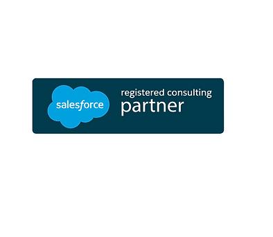 Salesforce Partner.png