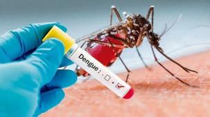 Dengue: la epidemia oculta