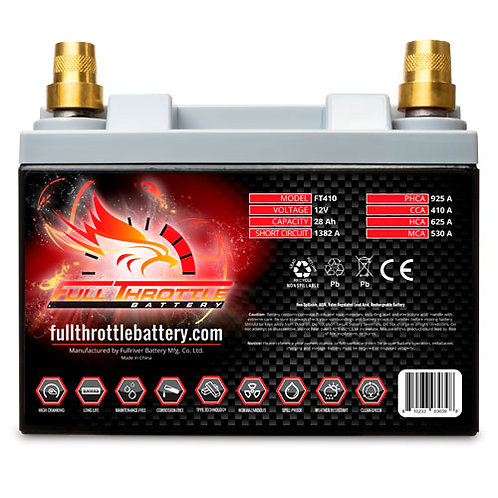 FT410 High-Performance AGM Battery