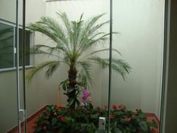 Jardim Mello