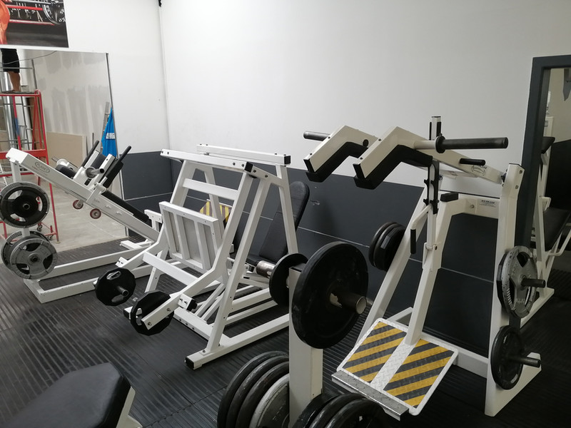 leg room horizontal press.jpg