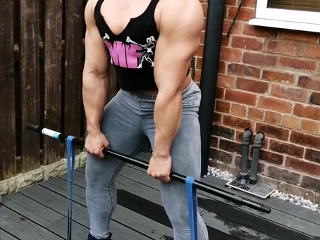 Home Workout Part 3: Back Day.