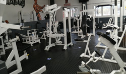 back machines musclefactory