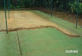 Non-Turf Cricket Nets Maintenance