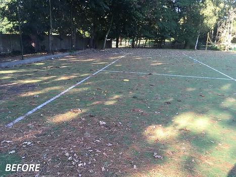artificial pitch maintenance