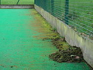 sports pitch weeds