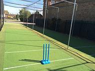 cricket maintenance