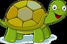 Schildkröte.png