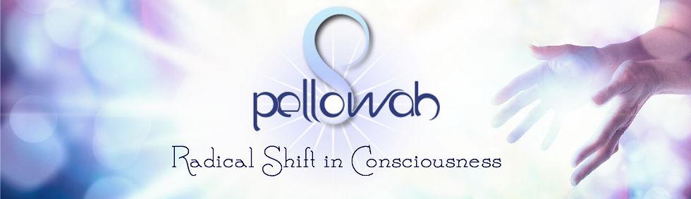Pellowah-Website-Header.jpg