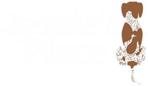 Jezzies place simple logo Color.png