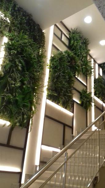 Painéis de plantas preservada