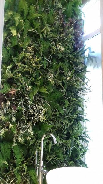 Parede de plantas permanentes