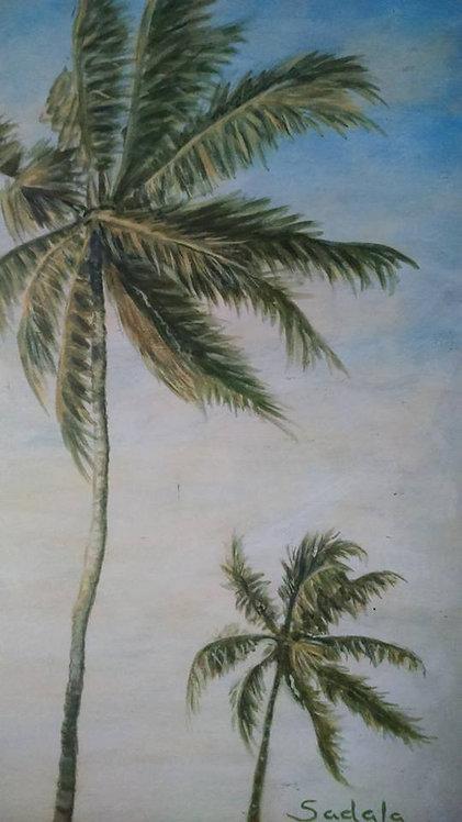 Coqueiros ao vento