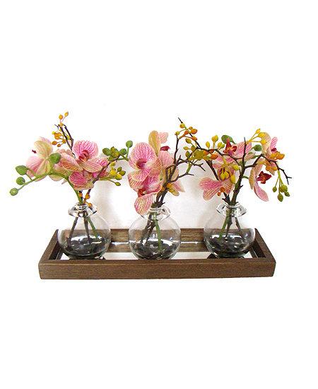 Arranjo conjunto orquídeas