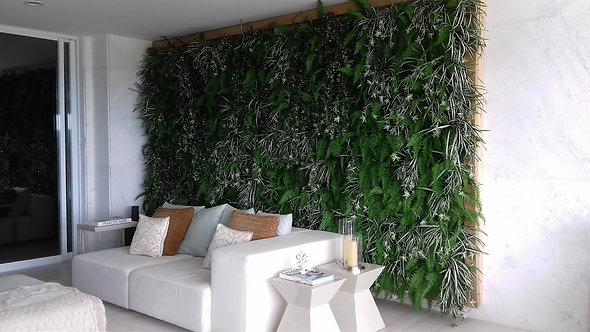 Painel de plantas preservadas
