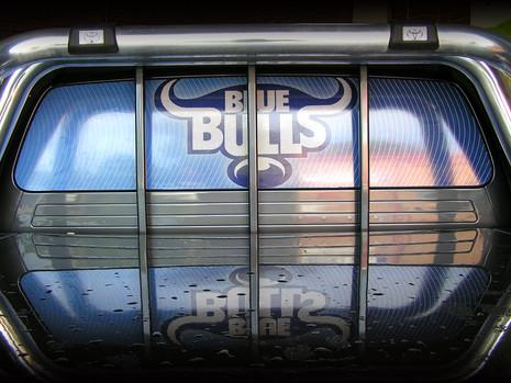 BlueBulls 2.jpg