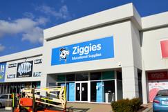 Ziggies2.jpg