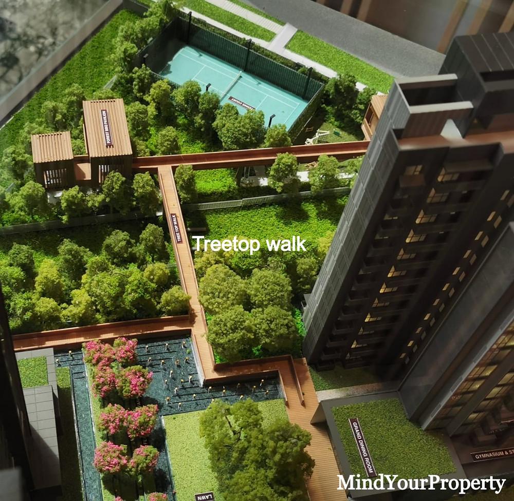 Leedon Green Treetop walk