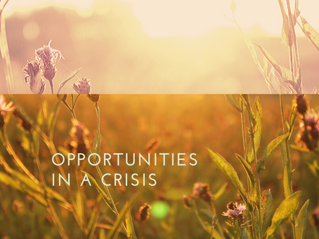 How To Find Opportunities in This Crisis