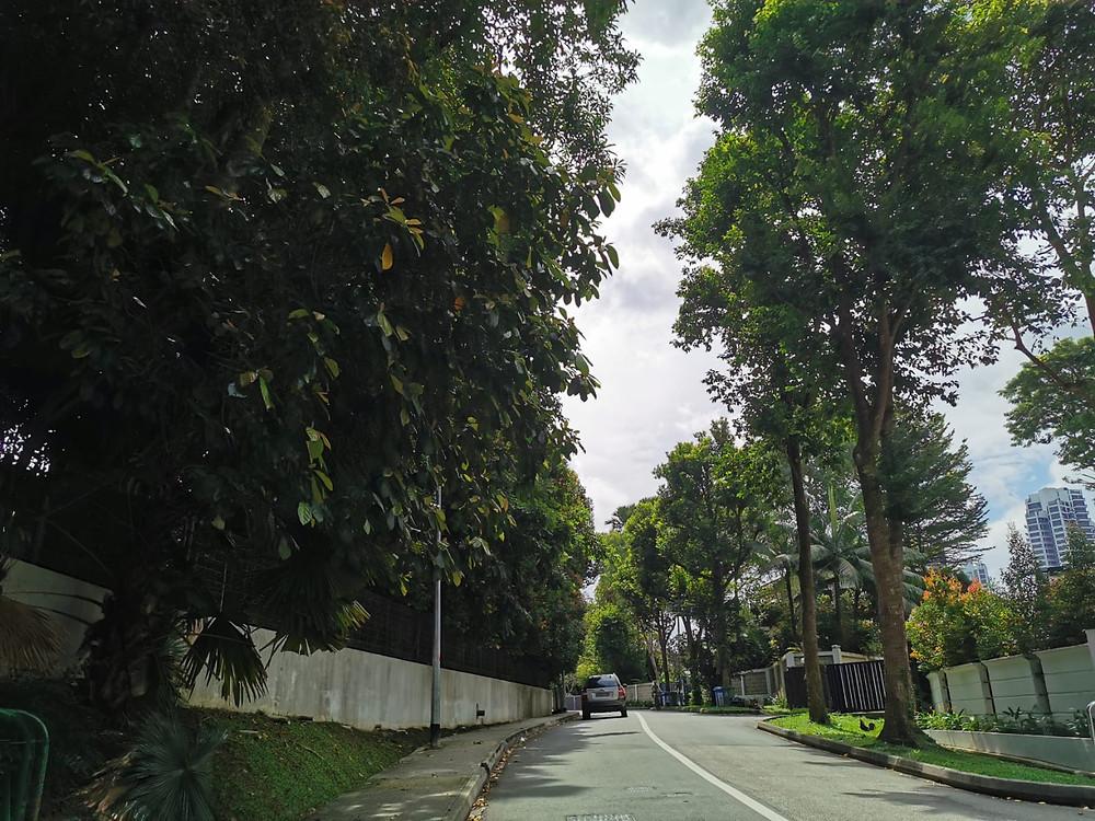 Leedon area greenery good district