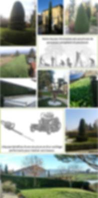 Réalisations d'entretien de jardin : taille, élagage,...