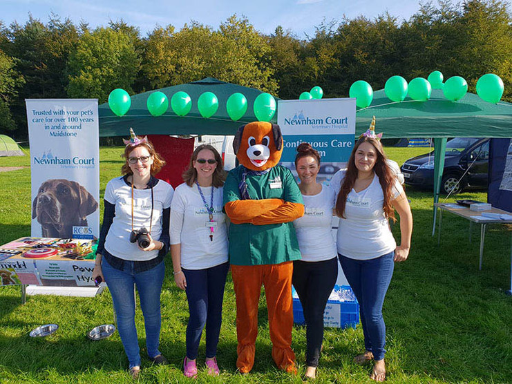 PAWS IN THE PARK 2018.jpg