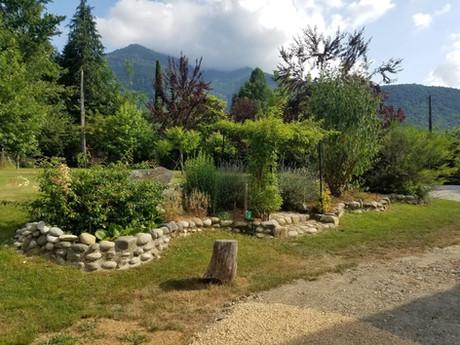 Notre jardin verdoyant