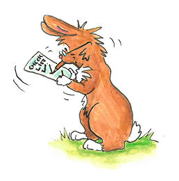 rabbit check list.jpg