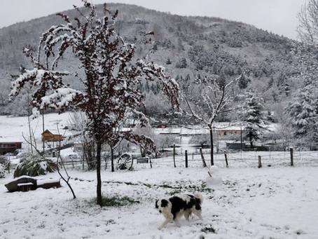 Le gîte, Juzet et les sports d'hiver