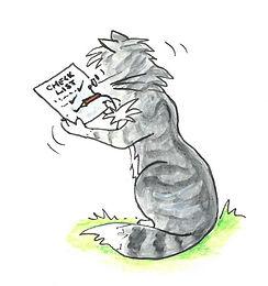 cat check list.jpg