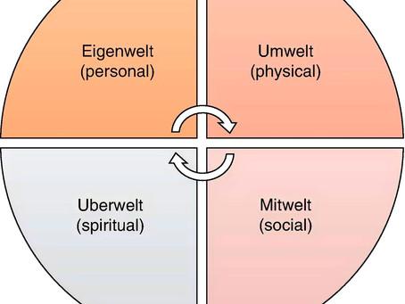 Diferencias entre la logoterapia y la terapia existencial-fenomenológica (2/3)