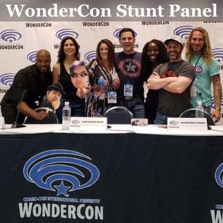 Wonder Con Stunt Panel.jpg