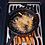 Thumbnail: Phantom Prestige 500 RSIB
