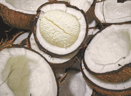 Taste Edition: The humble coconut