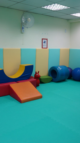 a.專業感覺統合教室