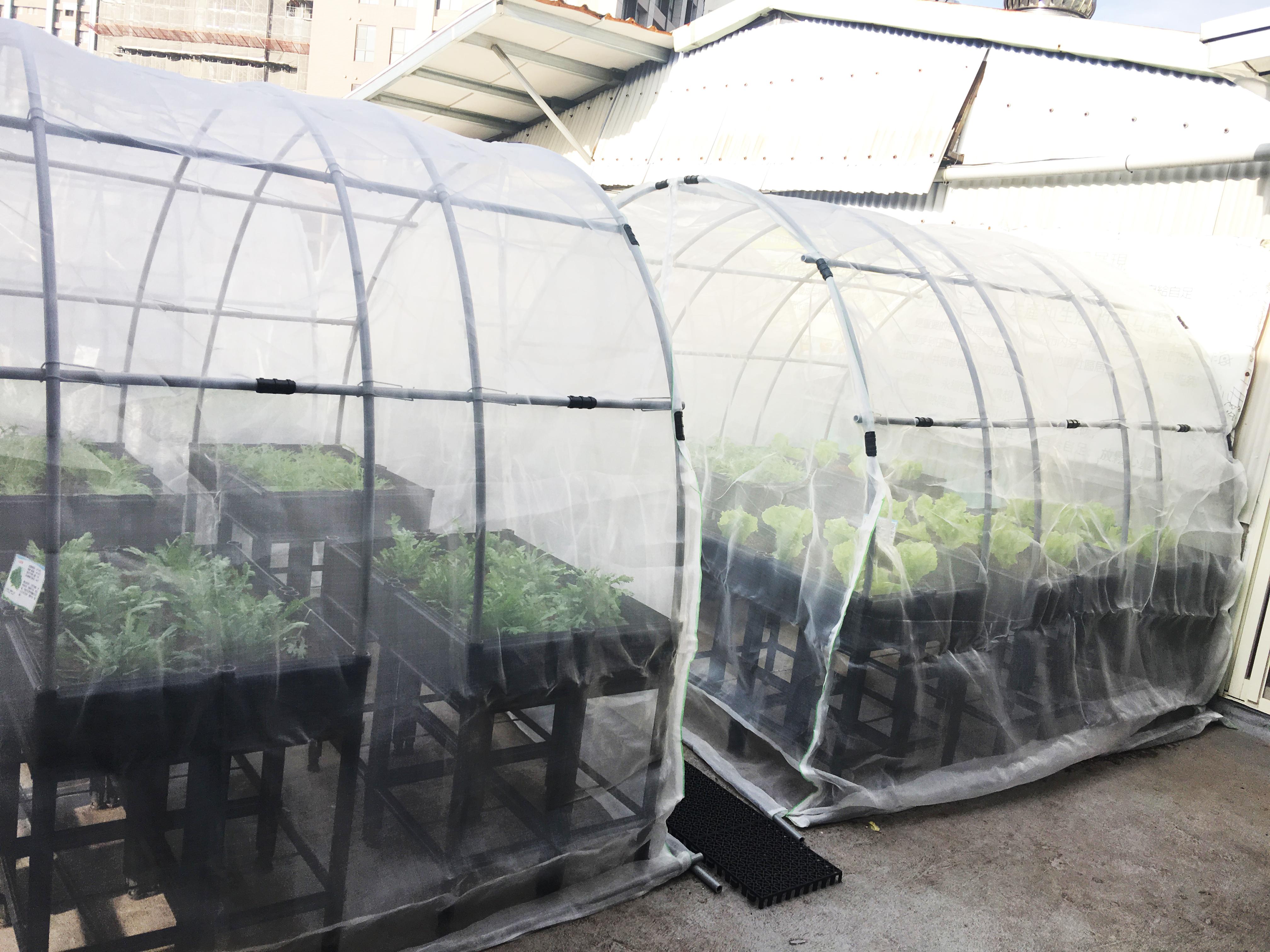 Greenkid Technological Farm Base