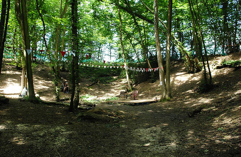 acoustic stage in the woods