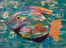 """""""King Fish"""" Original oil painting on canvas 35x45cm."""
