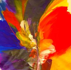 Echoes-of-colors.jpeg