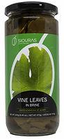 VINE LEAVES 2.jpg