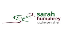 light therapy for racehorses