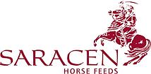 equestrian light therapy testimonial