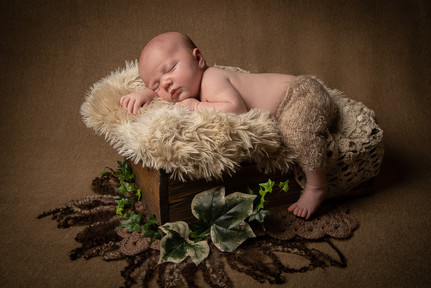Verina-Litster-Newborn-Landscape-22.jpg