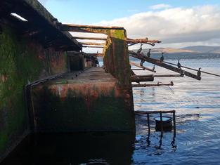 Shipwreck Tours 2.jpg