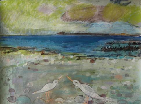 Ancient Beach Sanaig (2)