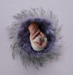 Verina-Litster-Newborn-Square-2.jpg