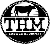 THM Cattle Company