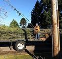 Portland Yard Debris Hauling Service